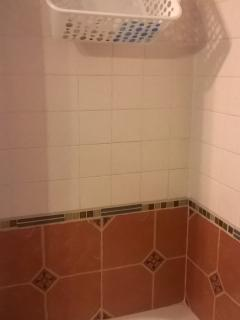 Extra shower storage