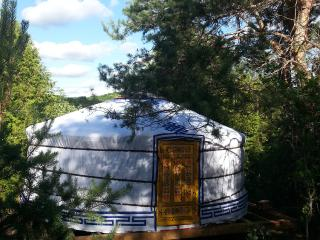 Mongolian Yurt 16' Yellow w/Sauna, Priceville