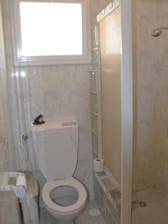 The toilet and the shower