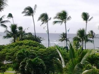 Book it!  Maui Sunset 401B  Remodeled w/ full kitchen and partial ocean view.