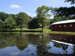 The Pond and Barn with the farmhouse hidden behind the trees.