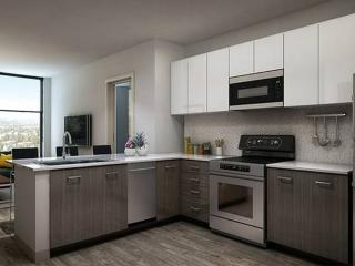 Brand New Fully Furnished Apartment in Westwood - Amazing Amenities, Los Angeles