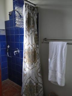 Bath & Shower,  towels provided.
