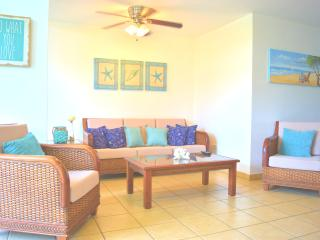 Beautiful Aquatika PH with A/C in all areas & more, Loiza