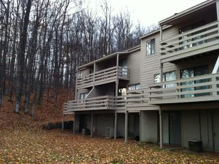 Petoskey/Harbor Springs-3BR Seasonal condo