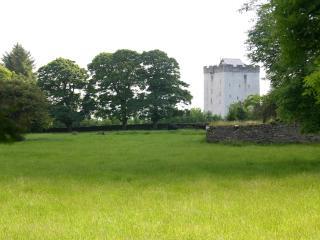 Turin Castle Kilmaine County Mayo Ireland