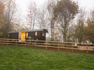 Bespoke handcrafted luxury Shepherd's Hut with private hot tub. king size bed, kitchen, shower room