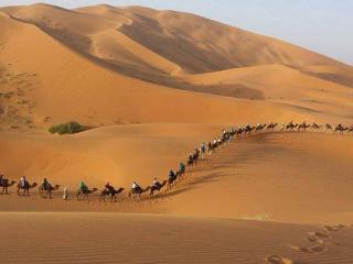 Sahara Camel Trekking Merzouga