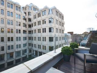 Superb 2 bed penthouse with a spectacular terrace, London