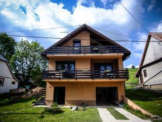 Kuća Bor/ House Bor in Gorski Kotar, Begovo Razdolje