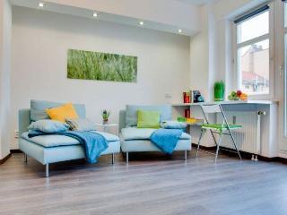 Dalimilova apartment in Zizkov {#has_luxurious_am…
