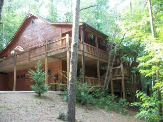 Luxury cabin, secluded, just minutes from town!