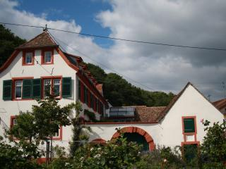 Hirschhorner Weindomizil, Neustadt an der Weinstrasse
