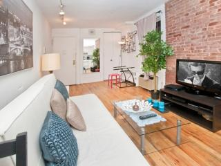 Nice and Fine 1 Bedroom 1 Bathroom Apartment in NY - Laundry in Building, Long Island City