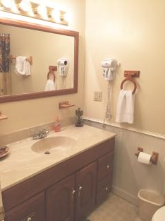 Master bath with tub shower combination. Hair dryer and makeup mirror for guest convenience