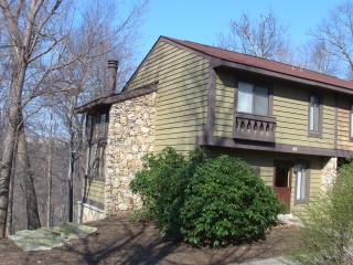 Spacious Season Rental at Seven Springs, PA