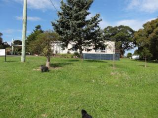 No.3. Longhorn Ranch Apartment, Orbost