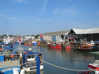 Seabreeze Whitstable 2-6.  Short stroll to harbour/sea. Availability N.Year.