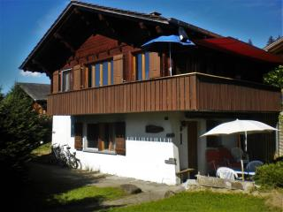 Chalet-style flat 20m from slopes, Swiss Alpes, Reichenbach