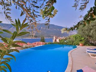 Villa Aspendos, contempory 4 bedroom seaview, Kas