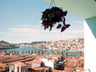 Breath Taking Views to Porto + Free Parking