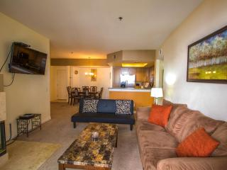 Luxury large condo 2 Bedroom /2 Bathroom, San Diego