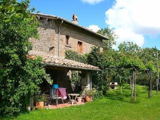 Villa Pace, Montefiascone