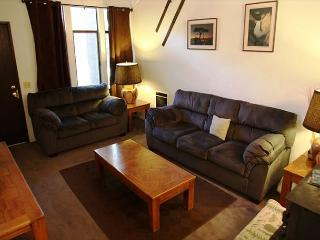 2 Bed + Loft/2 Bath, Sleeps up to 8, Centrally Located, WiFi