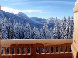 Chalet de montagne au pied des pistes, vue imprena, Morzine-Avoriaz