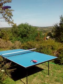 Table tennis table with a view!