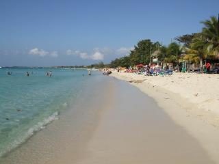 Oceanside Luxury Cottage - Negril