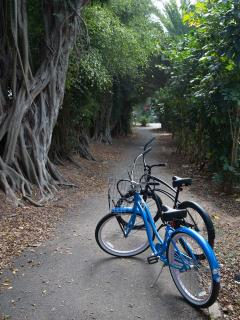 Our bikes on the bike path to Sunset Beach