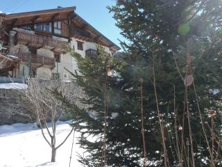 Chic Rustic chalet Fruitière 200m from ski lift. Option meal service