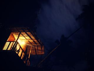 Night view of tree house