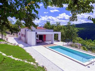 Montecolori - brand new design villa with pool in middle of nature, Vizinada