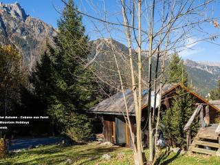 La Cabane aux Foret - Chamonix