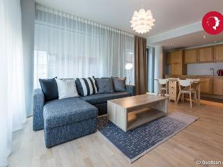 Executive Style 1-Bedroom Apartment in Rotermanni