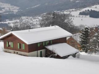 Le Green Chalet, penthouse apartment (160m2), Villard