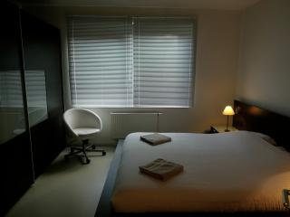 Comfortable city centre guest room with garden, Brussels