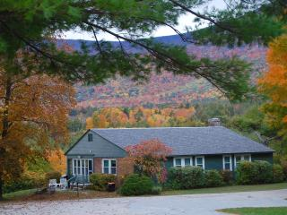 INNKEEPERS COTTAGE: HEART OF MANCHESTER: sleep 6, views, wood burning fireplace,