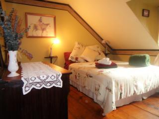 Chambre Magenta (1 grand lit et 1 lit simple), salle de bain et salon commun partagés avec ch. Nuage