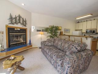 Comfortable One Bedroom, Sun Meadows Three #202, Kirkwood