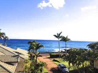 Hale Pohaku Kai-Spectacular 3bd house with ocean views short walk to beaches