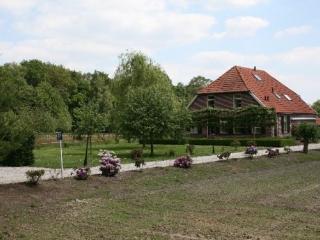 Luxe familievriendelijke Vakantieboerderij, Winterswijk