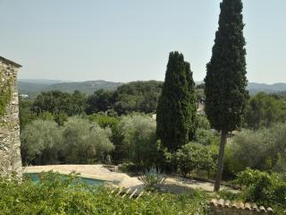 Provencal farmhouse with pool set in olive trees.