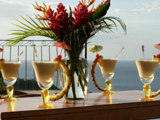 Luxury all-inclusive Costa Rican vacation rental