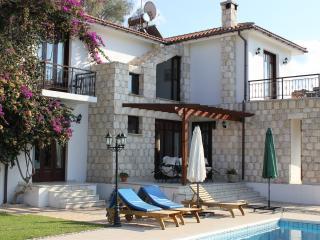 4 Bed Villa - Pool - Children's Pool & Playground, Argaka