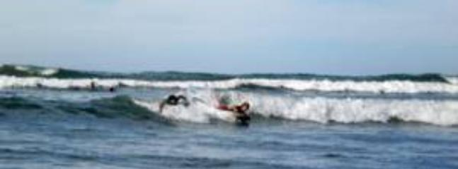 Surf , boogie board, padel board or kayak your time away.