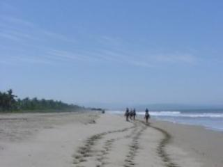 Horseback down the beach or into the mountains. The horse come to you!