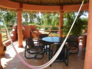 Relax on the hamock  on the Palapa.